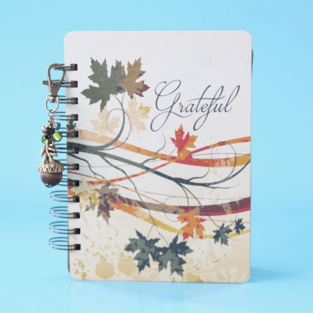 holly-journals-review-november-2016-6
